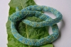 Schlangenhalsband türkis hellgrün