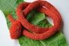 Schlangenhalsband rot